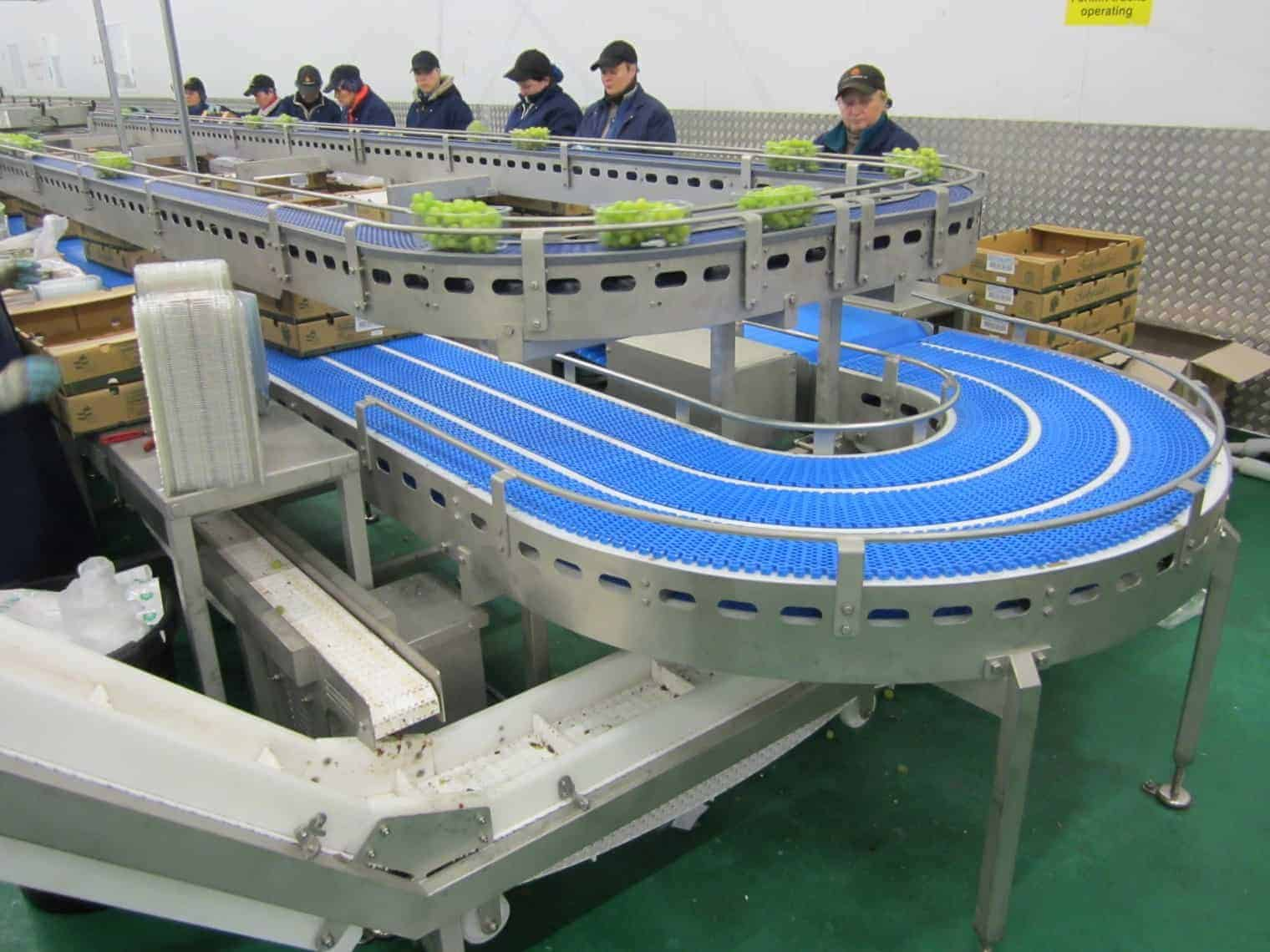 Stainless Conveyor 90 Degree Conveyor Bakery Conveyors
