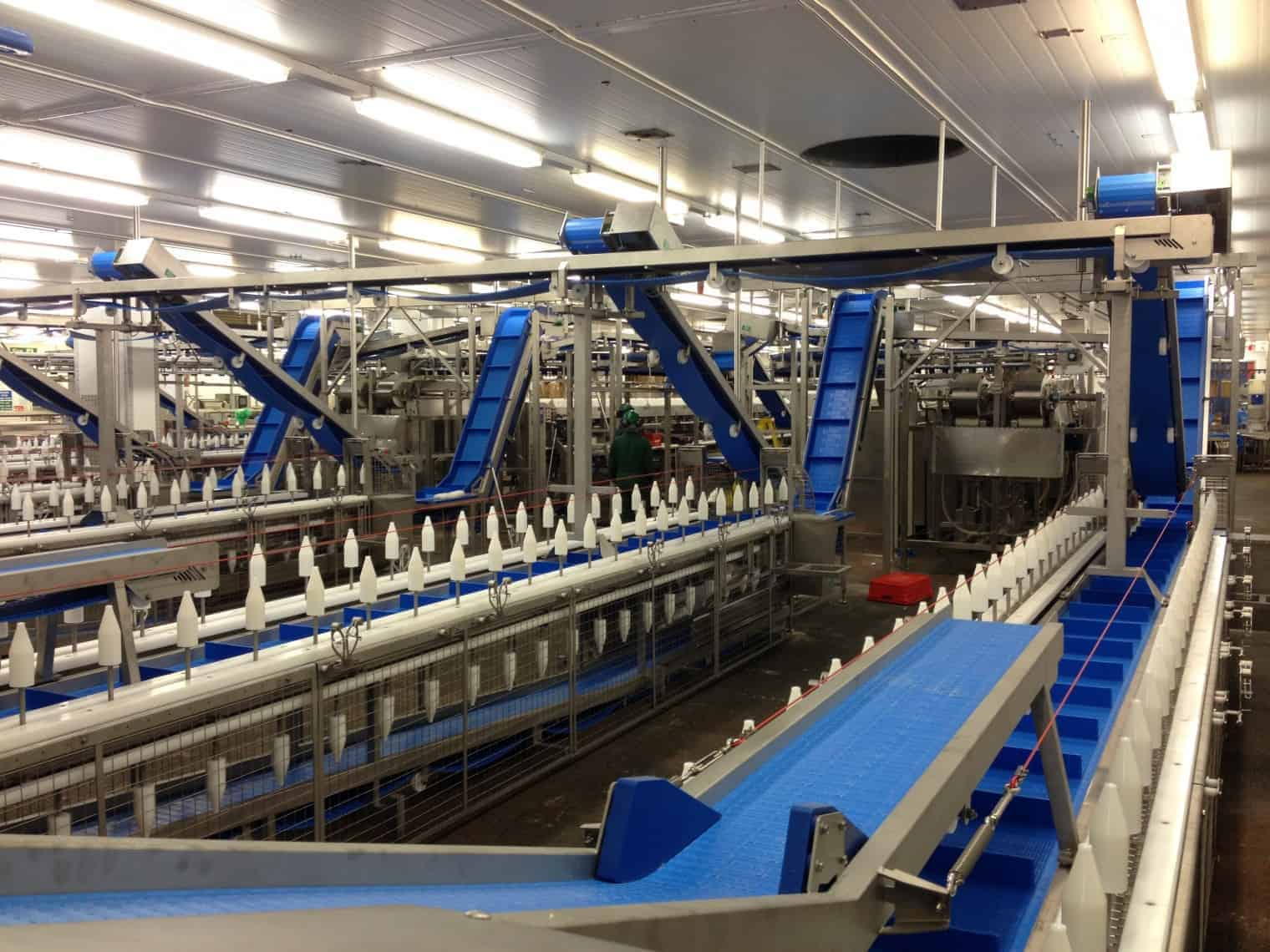 Conveyor System Maintenance Top Tips Wrightfield