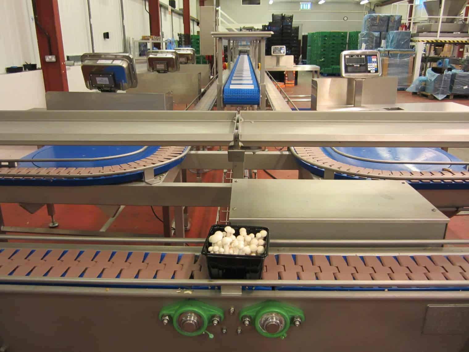 Belt Conveyors Wrightfield Ltd